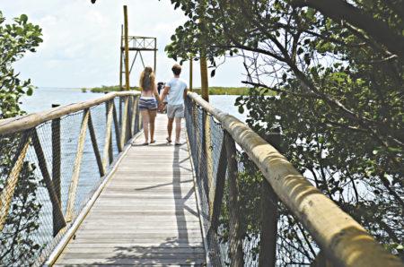 Praia de Requenguela, Ceará (Foto: Ellen Freitas)